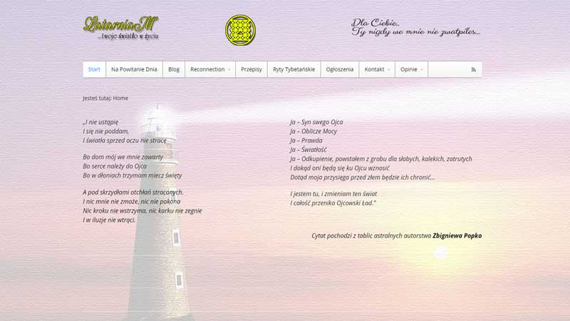 strony-internetowe-w-rugby-ebiznes-irek-wrobel-19