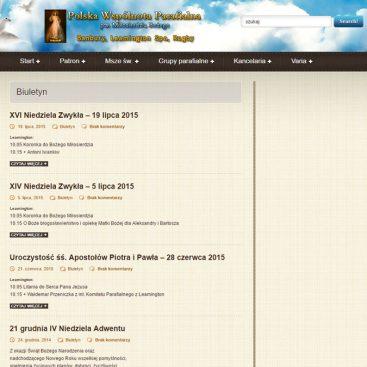 strony-internetowe-w-rugby-ebiznes-irek-wrobel-41